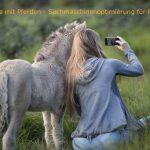 Bild von einer Frau die sich und ein Pferd fotografiert mit dem Schriftzug Fotografie mit Pferden – Suchmaschinenoptimierung für Fotografen